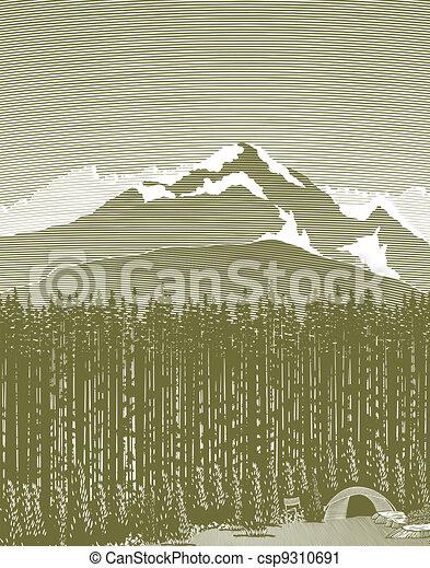 山, 營房, 木刻, 荒野 - csp9310691