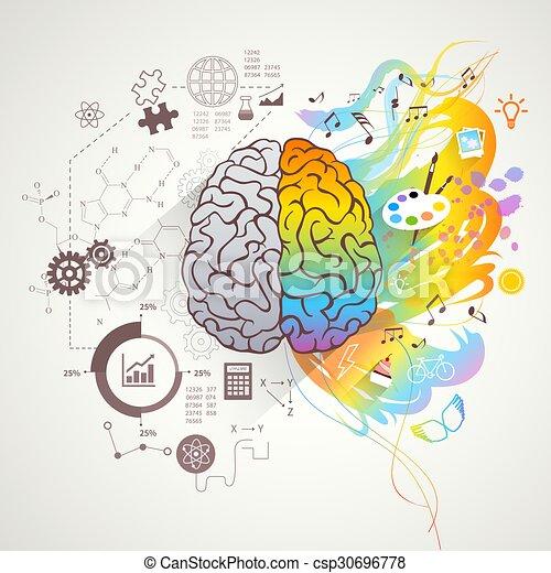 左, 脳, 概念, 権利 - csp30696778