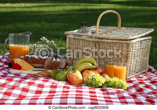 広がり, ピクニック, おいしい - csp8830909