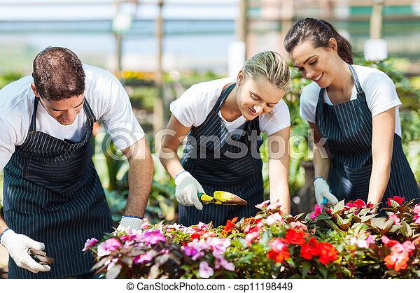 庭師, グループ, 若い, 仕事 - csp11198449