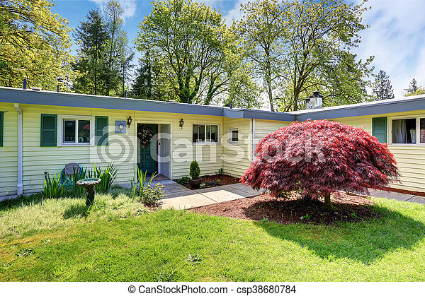 庭, 家, アメリカ人, 外面, 前部, 草, rambler, 満たされた - csp38680784