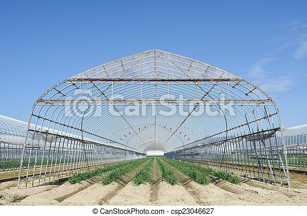 建筑物, 农业, 农场 - csp23046627