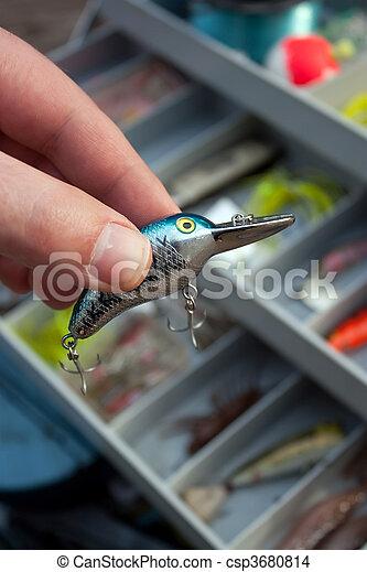 引誘, 權利, 釣魚, 選擇 - csp3680814