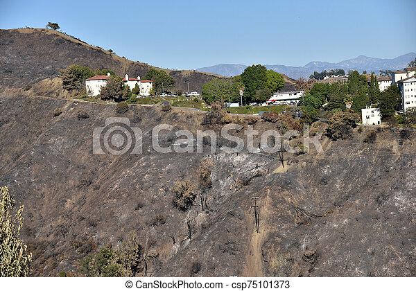 後で, 山火事, 地位, 構造, getty - csp75101373