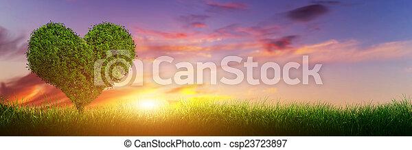 心, banner., 木, 草, 愛, sunset., フィールド, パノラマ, 形 - csp23723897