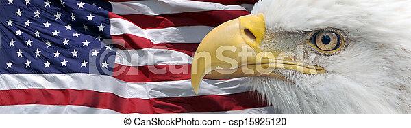 愛国心が強い, ワシ, 旗 - csp15925120