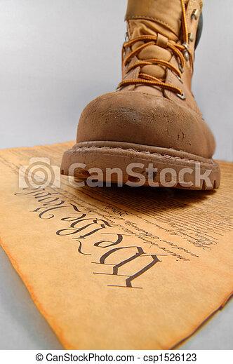 憲法, ステップ - csp1526123