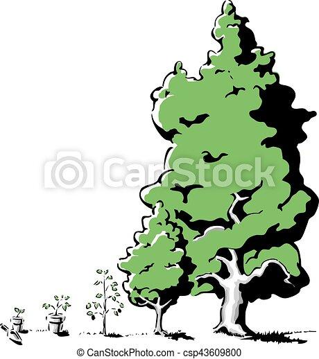 成長, 樹 - csp43609800