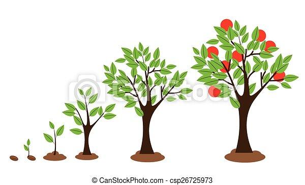 成長, 樹 - csp26725973