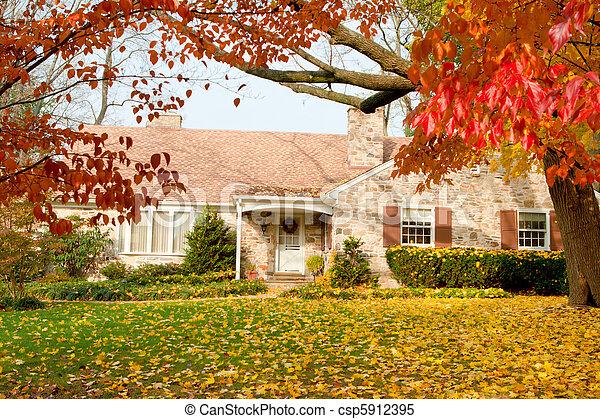 房子, 離開, 樹, 費城, 黃色, 秋天, 秋天 - csp5912395