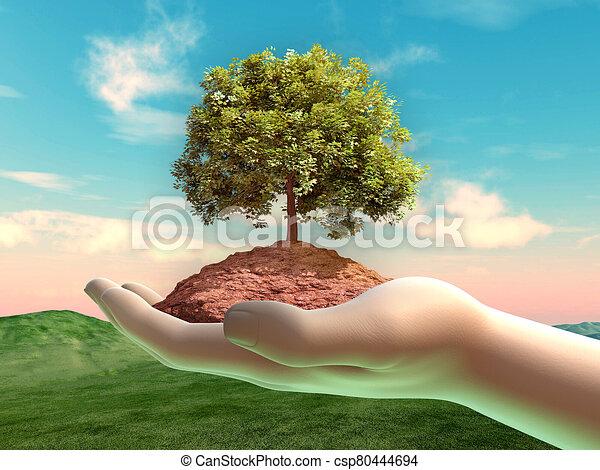 手, 杯形, 土壌, 木, いくつか - csp80444694