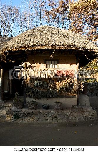 文化, 家, 南, 伝統的である, 韓国 - csp17132430
