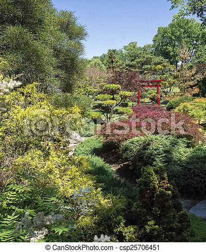 日本の庭 - csp25706451