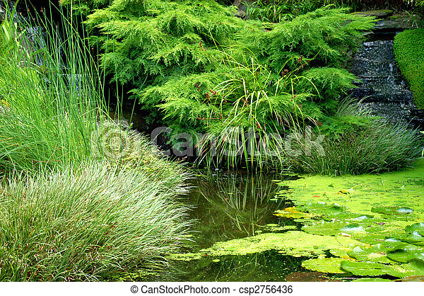 日本の庭 - csp2756436