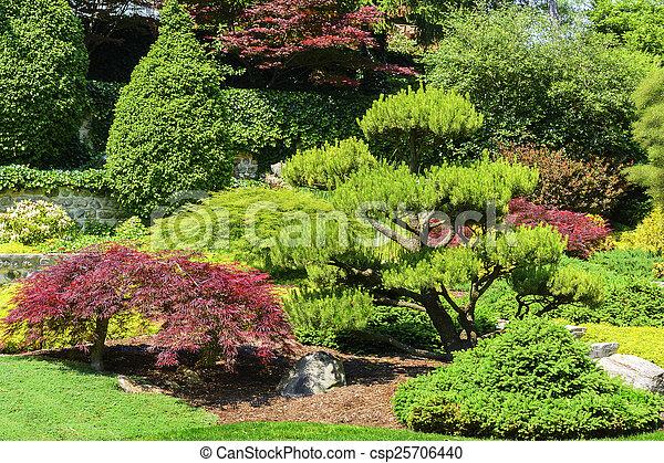 日本の庭 - csp25706440