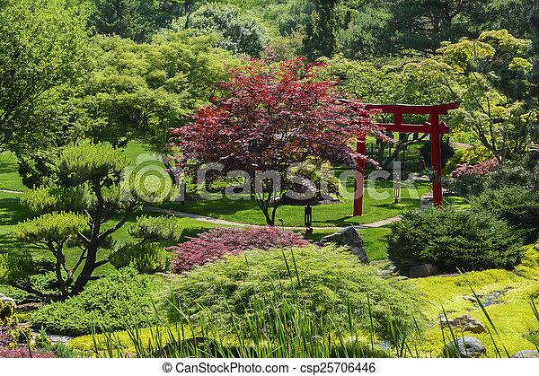 日本の庭 - csp25706446