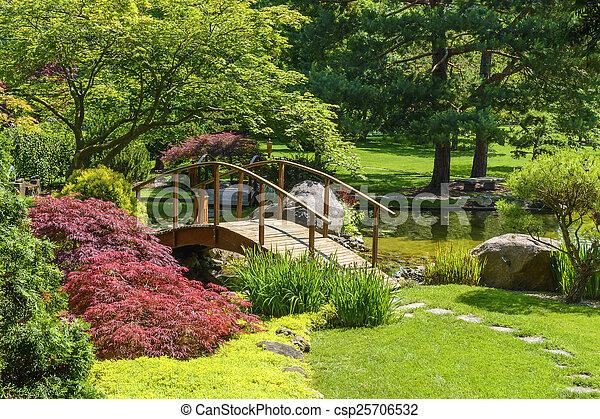 日本の庭 - csp25706532