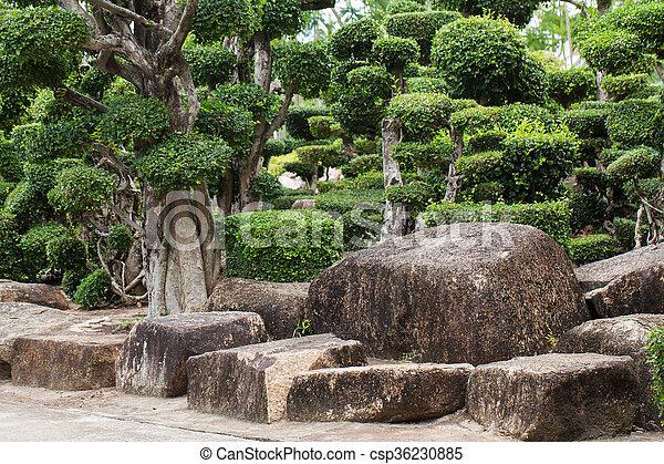 日本の庭 - csp36230885