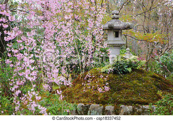 日本の庭, sakura - csp18337452