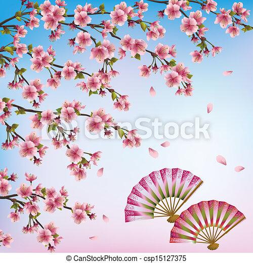 日本語, -, ベクトル, 花, さくらんぼ, 背景, 美しい, 開いた, fans., 木, sakura, 装飾用である, イラスト, 2 - csp15127375