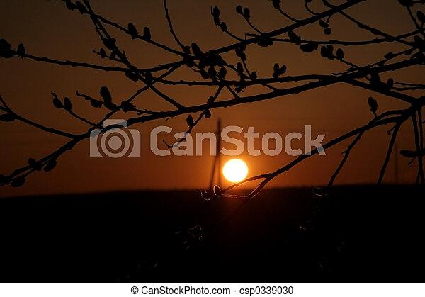 日没 - csp0339030