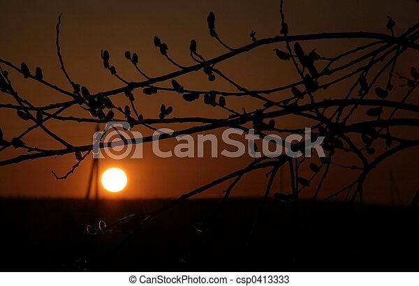 日没 - csp0413333