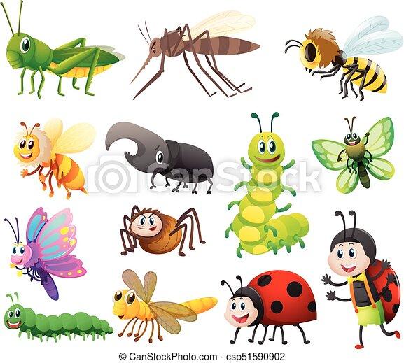 昆虫 別 種類 白い背景 別 種類 昆虫 イラスト 背景 白