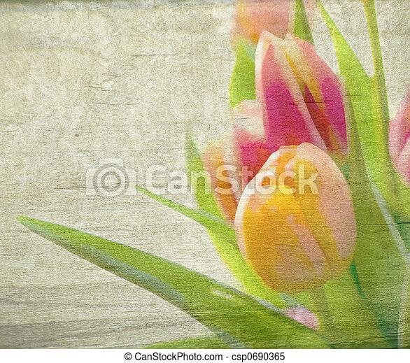 春の花 - csp0690365