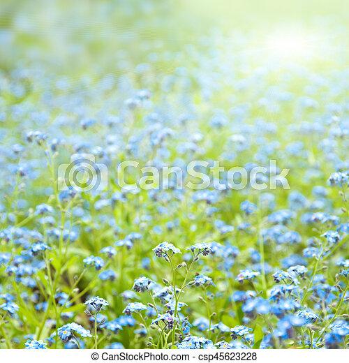 春の花, 日当たりが良い, 背景 - csp45623228