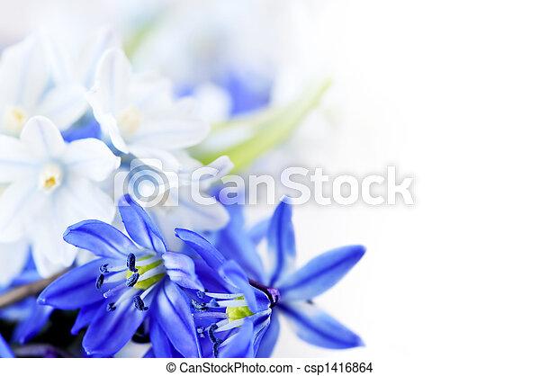 春の花, 背景 - csp1416864