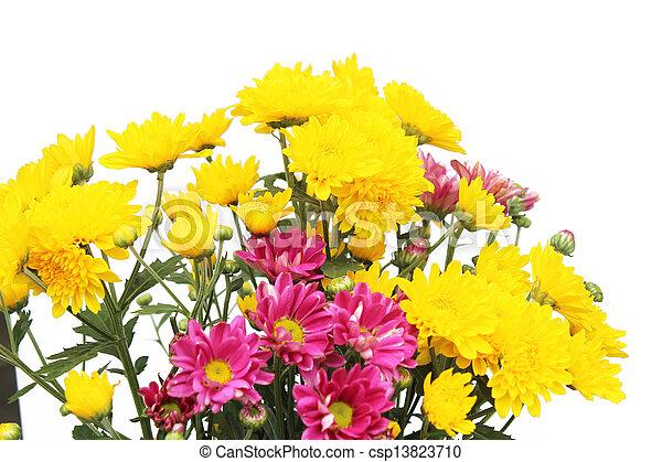 春の花, 背景 - csp13823710
