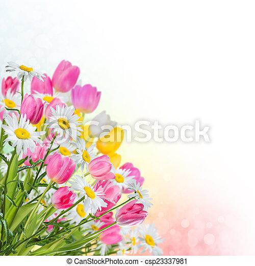 春の花, 背景 - csp23337981