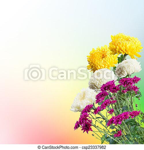 春の花, 背景 - csp23337982