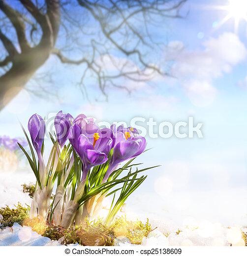春の花, 芸術 - csp25138609