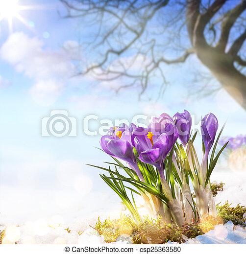 春の花, 芸術 - csp25363580