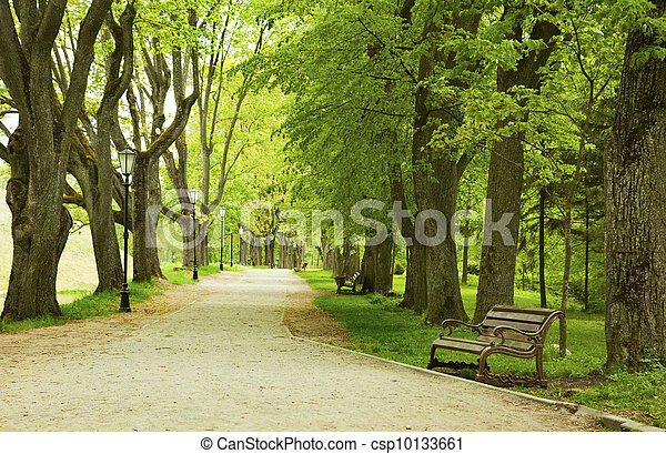 春天, 公园长凳 - csp10133661
