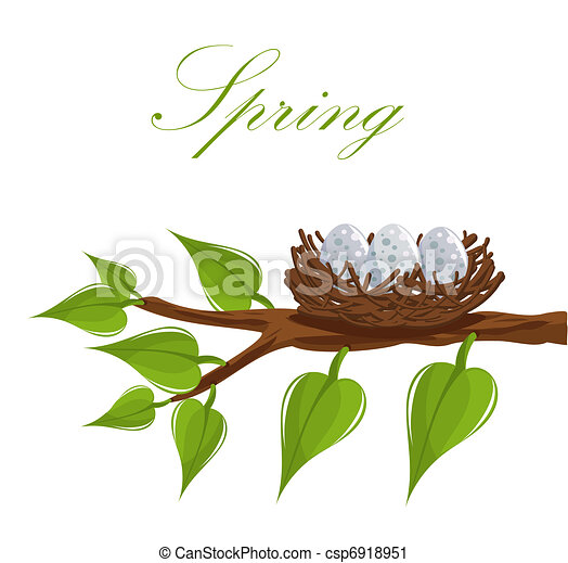 春天, 巢 - csp6918951