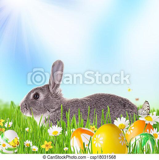 春, うさぎ - csp18031568
