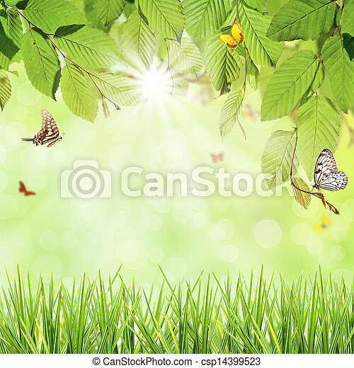 春 - csp14399523