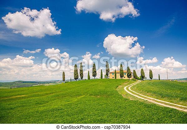 春, トスカーナ, 風景 - csp70387934