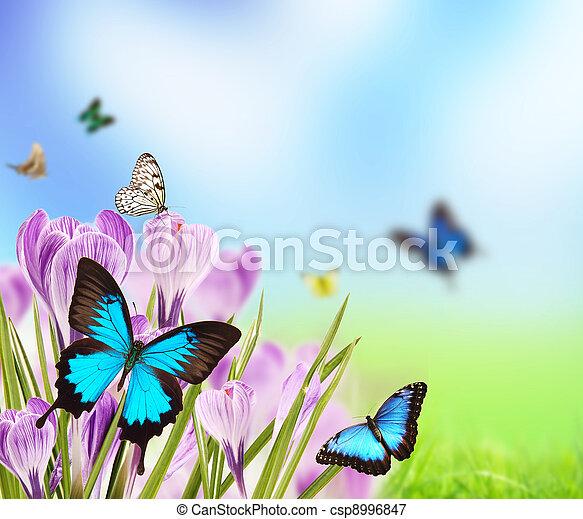 春, ロマンス語 - csp8996847