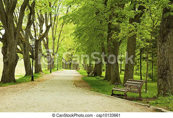 春, 公園のベンチ - csp10133661