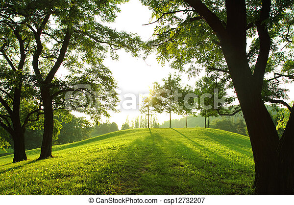 春, 公園 - csp12732207