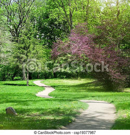 春, 公園, 緑 - csp19377987