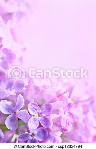 春, 抽象的な 芸術, ライラック, 背景 - csp12824794