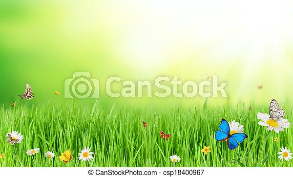 春, 牧草地 - csp18400967