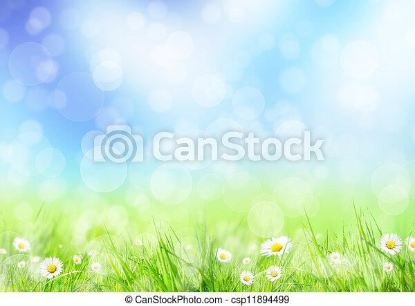 春, 牧草地 - csp11894499