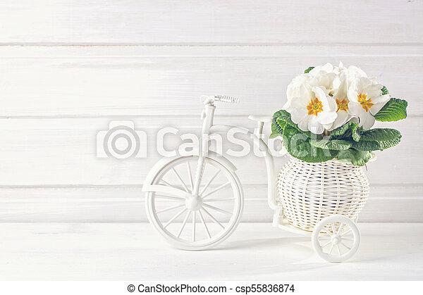 春, 白い花 - csp55836874