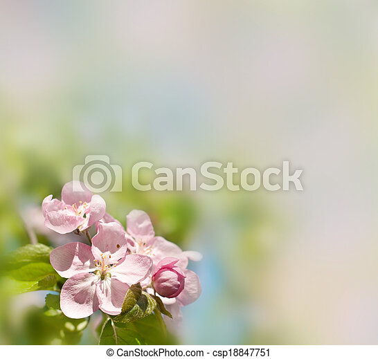 春, 背景 - csp18847751