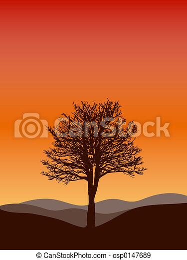 木の 冬 - csp0147689